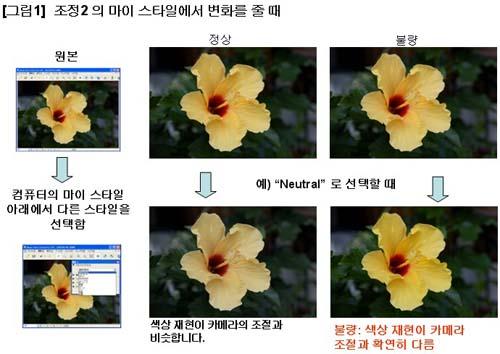 Image Data Converter SR 업데이트 프로그램 방법 (Macintosh)