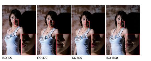 ISO 감도 조절은 사진에 어떤 영향을 주나요?