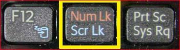키보드 입력시 글자 대신 숫자가 입력됩니다.